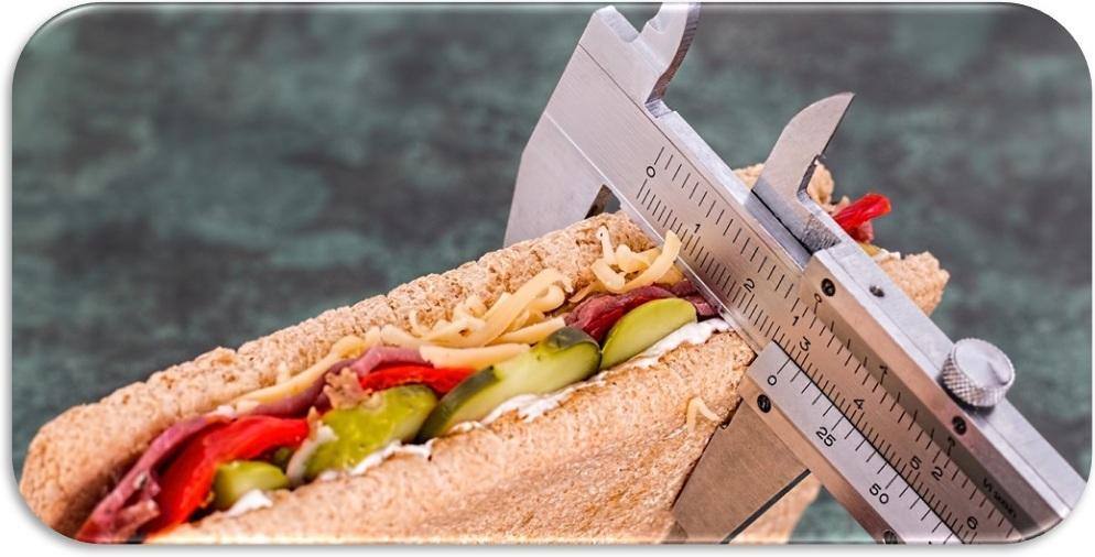 3-й этап лечения расстройства пищевого поведения. изучение пищевого поведения и образа жизни
